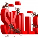 Know Your Skills: They Are Your Prime Selling Points